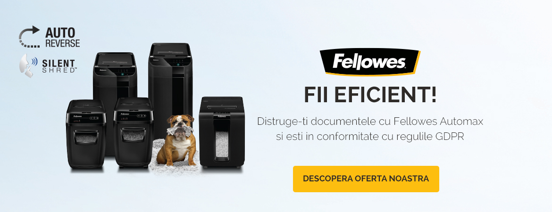 Distrugatoarele Fellowes ...
